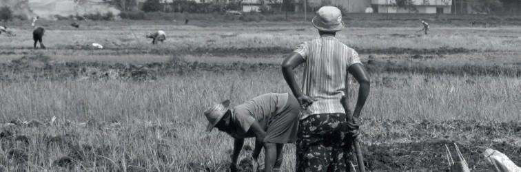 Bouwen op boerengrond in Mozambique